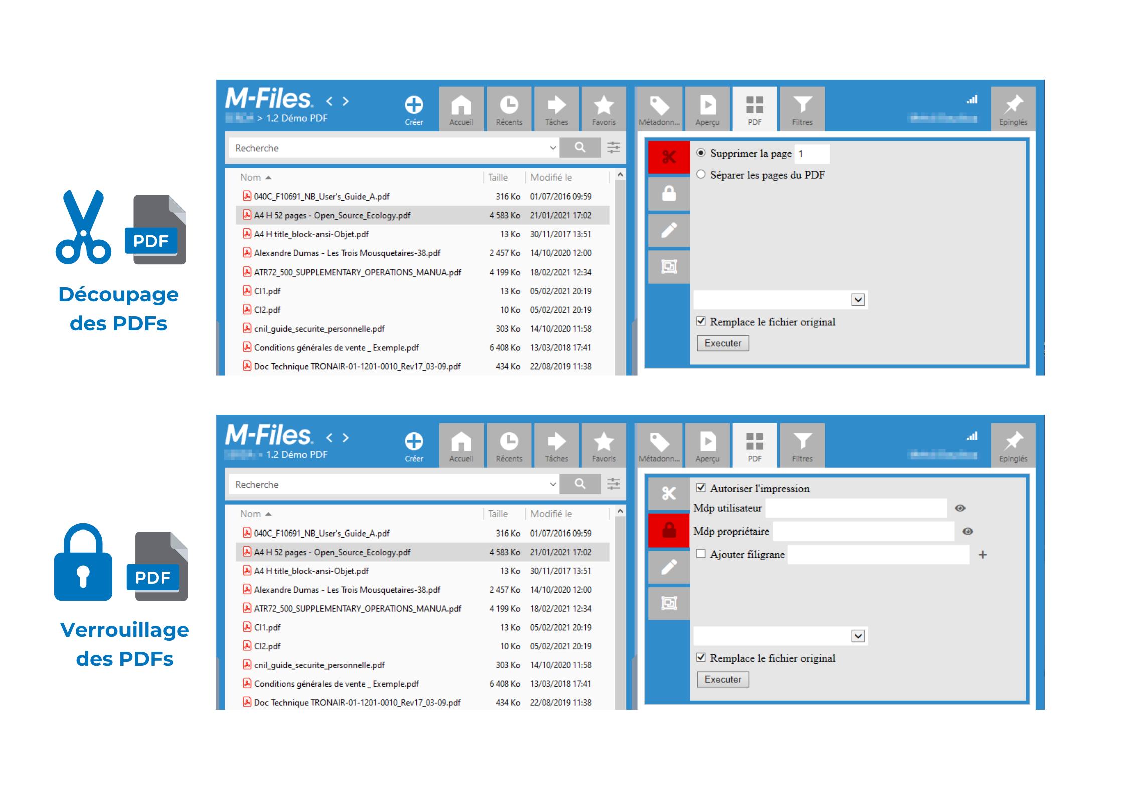 PDF Manager Verrouillage Decoupage